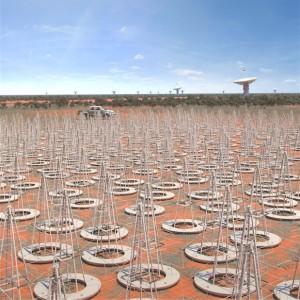 SKA dipole arrays
